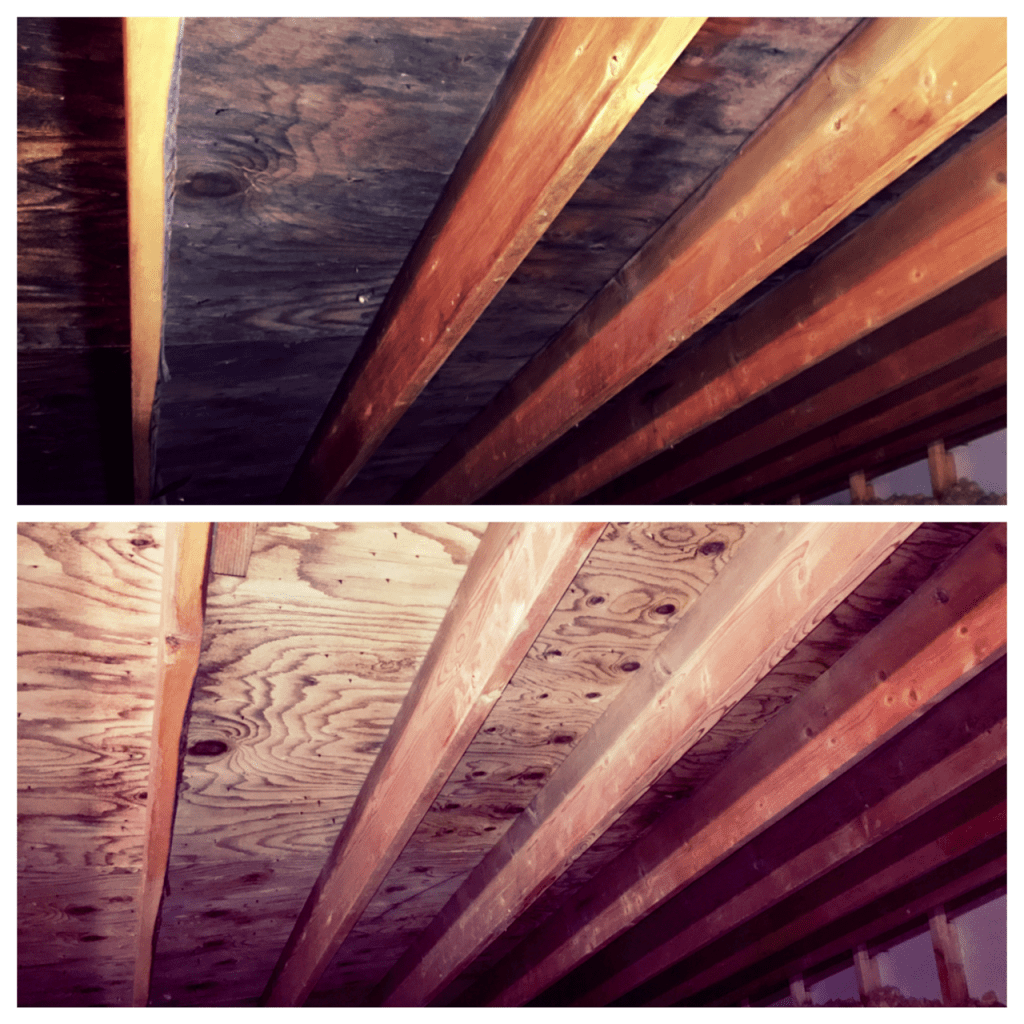 ATTIC MOLD BEFORE AND AFTER