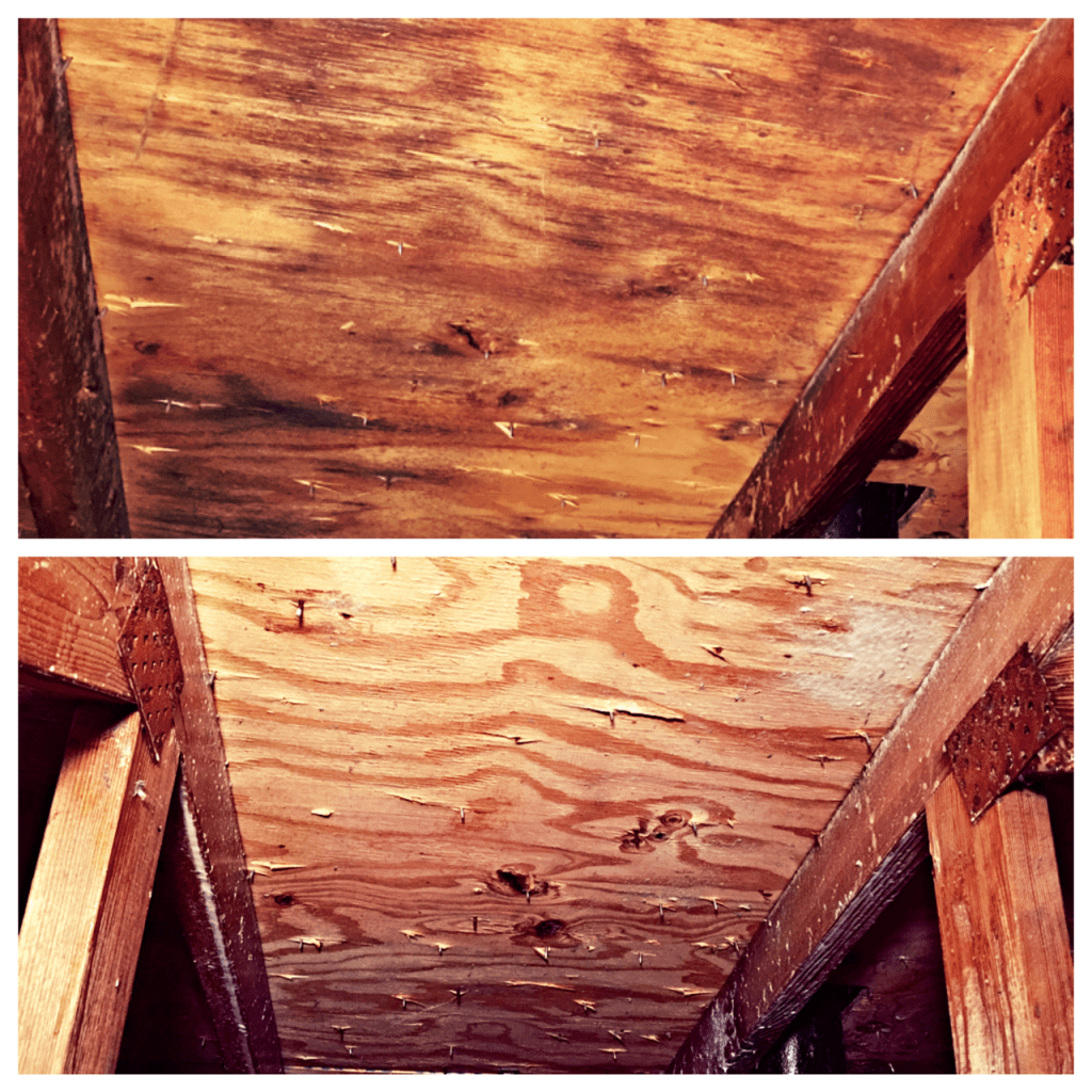 BEFORE AND AFTER ATTIC MOLD IMAGE
